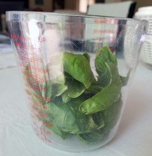 fresh-basil-leaves-for-making-pesto