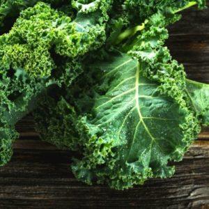 healthy italian food organic